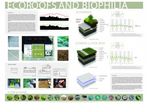 EcoRoofs and Biophilia